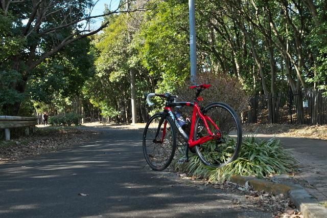 PINARELLO PRINCEで雑木林の小径や廃道で-04
