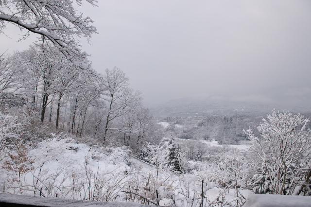 雪の秘密基地周辺-01