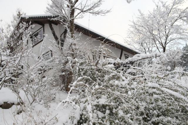 雪の秘密基地-01