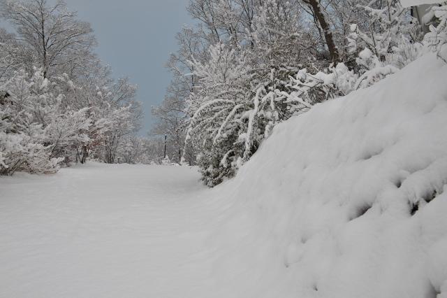 雪の秘密基地周辺-03