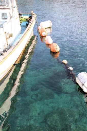 御津の漁港の海の中