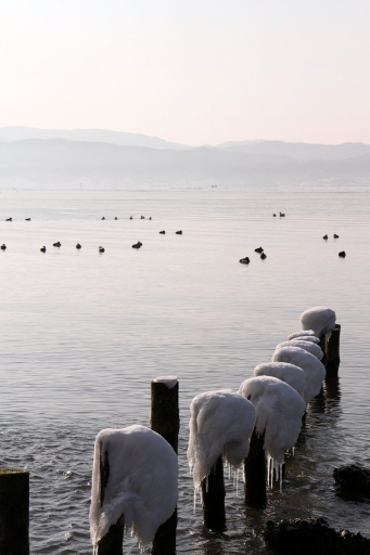 先日の宍道湖