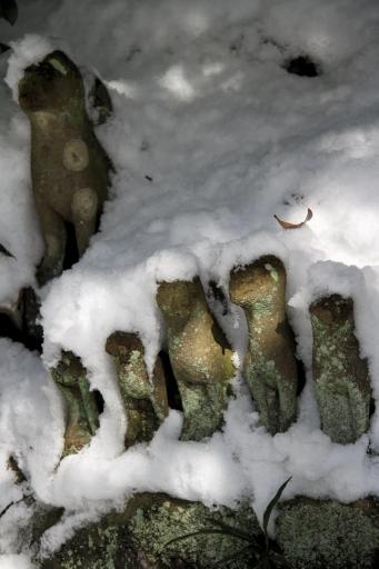 雪に埋もれた狛狐