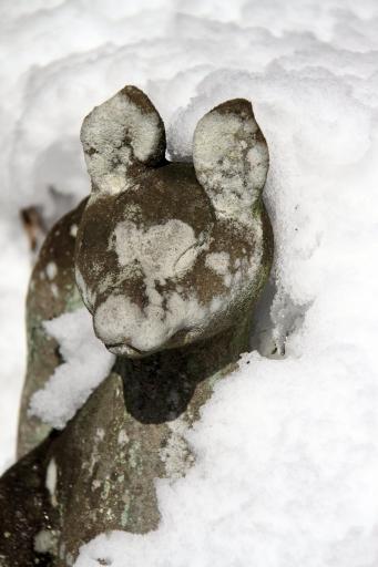 雪の中の狛狐