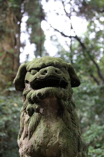 佐為神社の狛わんこ
