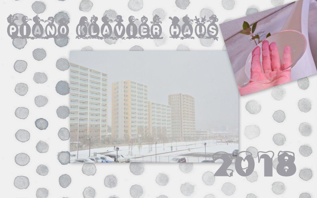 雪の沖田中央公園