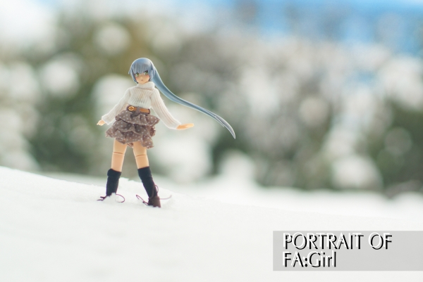 18014 Portrait of FAG 11 03 re