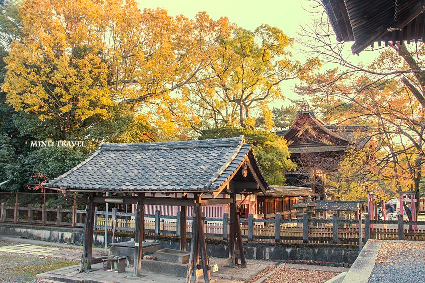 豊国神社 紅葉