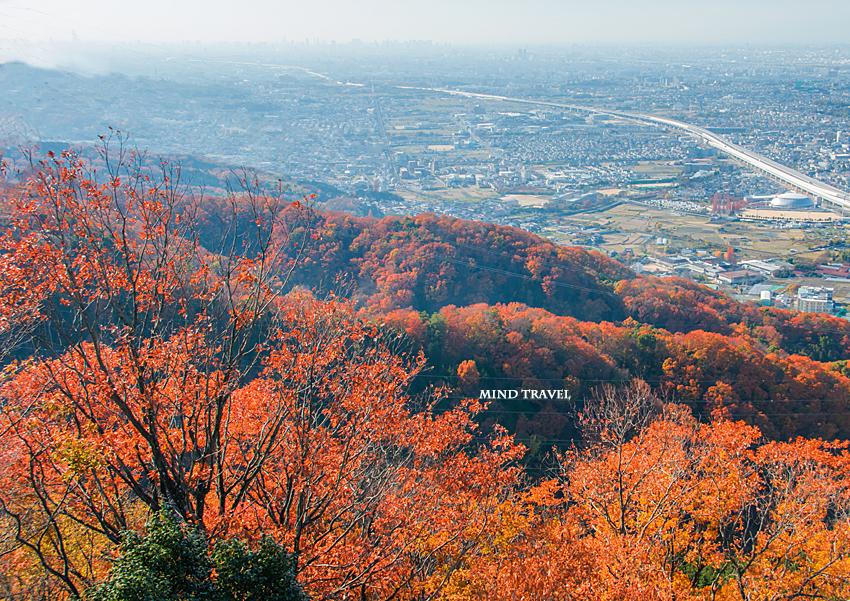 交野山より大阪方面を望む