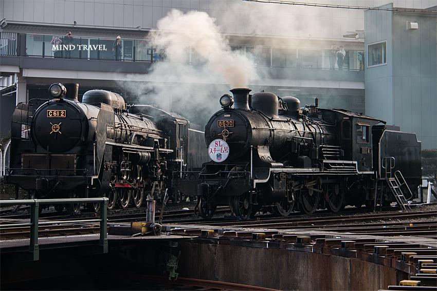 京都鉄道博物館 扇形車庫と蒸気機関車