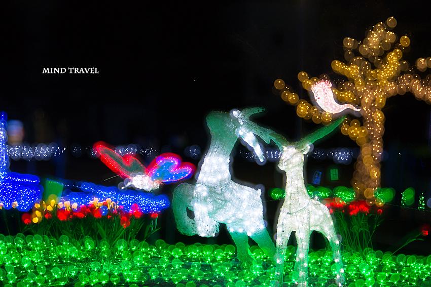 天理市 光の祭典 鹿と蝶