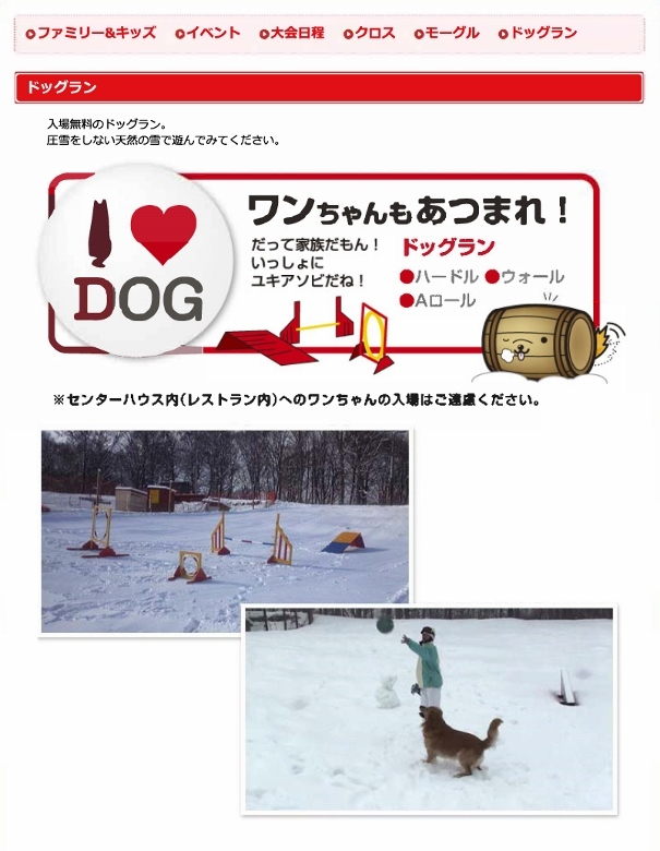 dog_run (605x780)