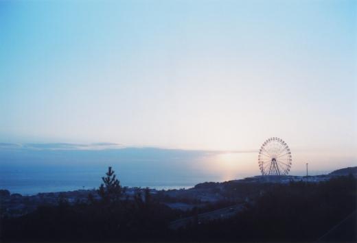 TOY-2726_Nikon.jpg