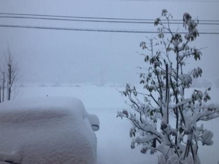 180112雪