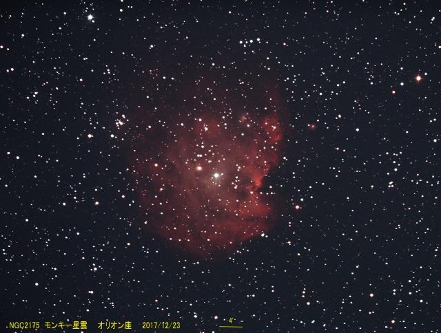 NGC2175_モンキー星雲_オリオン座_20171223G_519527x6