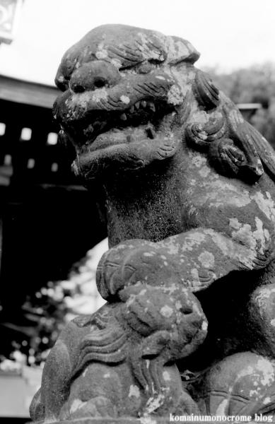 杉山神社(緑区三保町)2