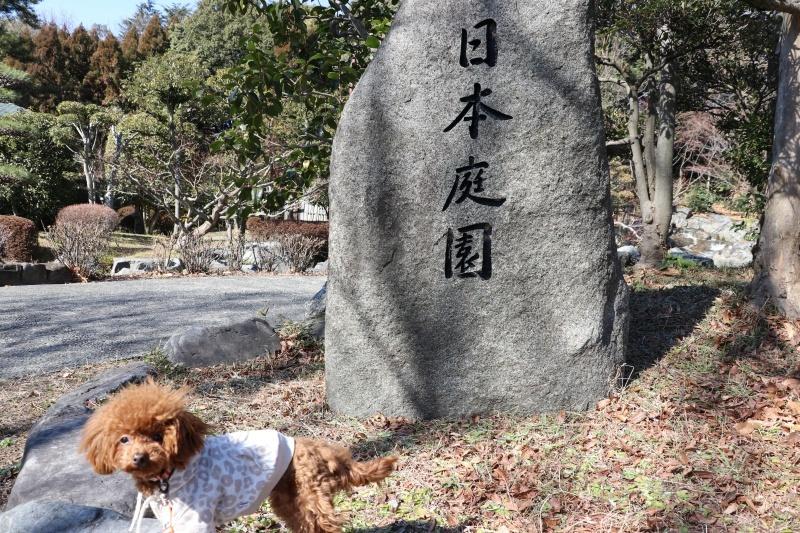 20180204花博記念公園7
