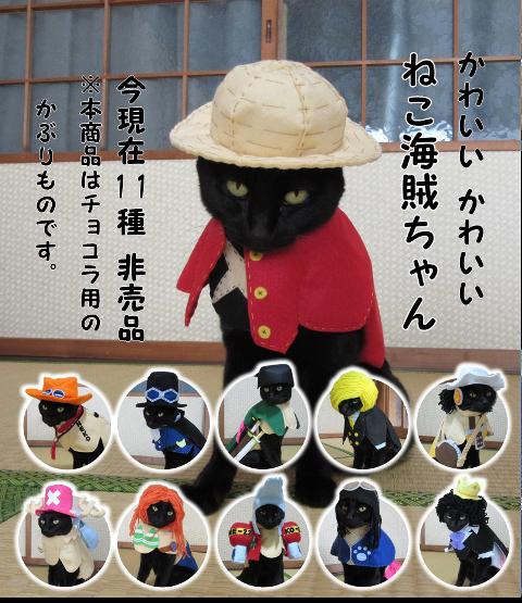 かわいいかわいい猫海賊ちゃん(全員集合) サイズ小さい