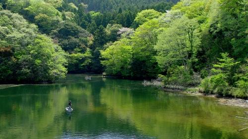 新緑湖面_6