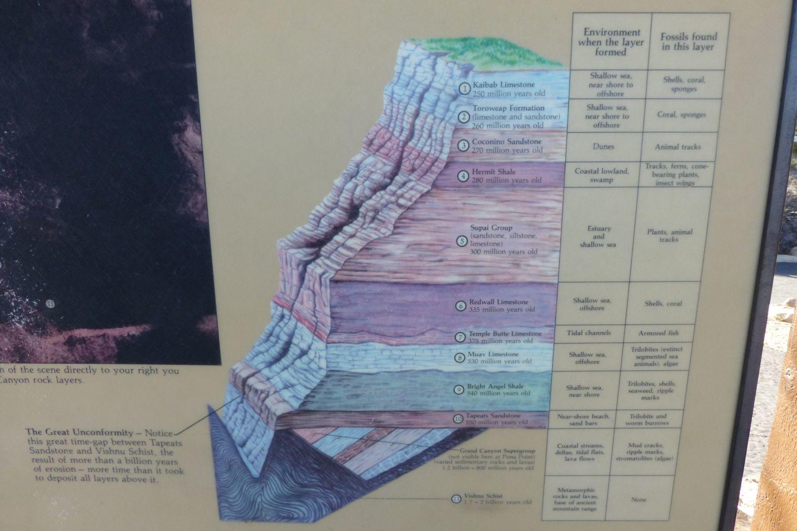 layer chart