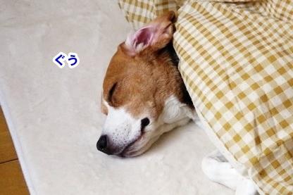 おやすみ 1