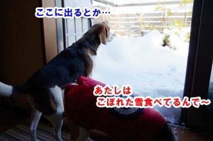 雪遊び 3