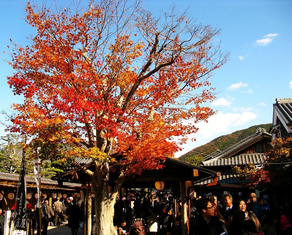 2013_11_29 伊勢神宮:おはらい町A12