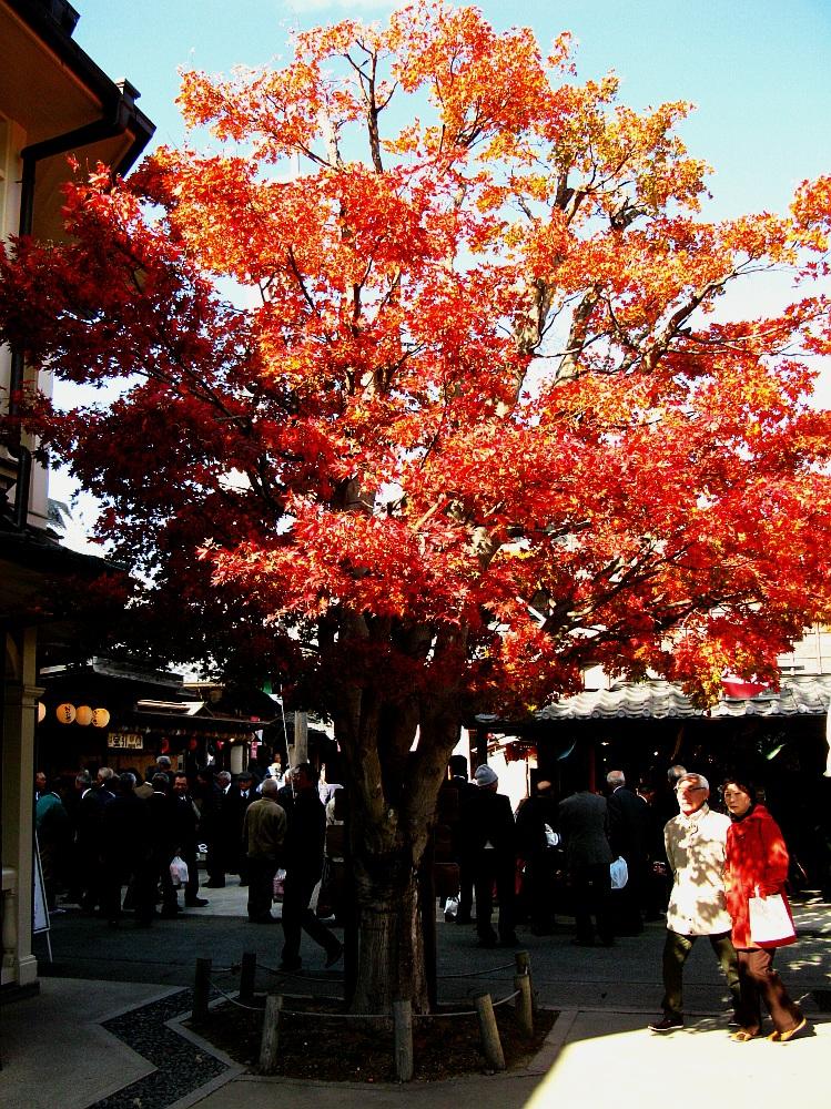 2013_11_29 伊勢神宮:おはらい町A15