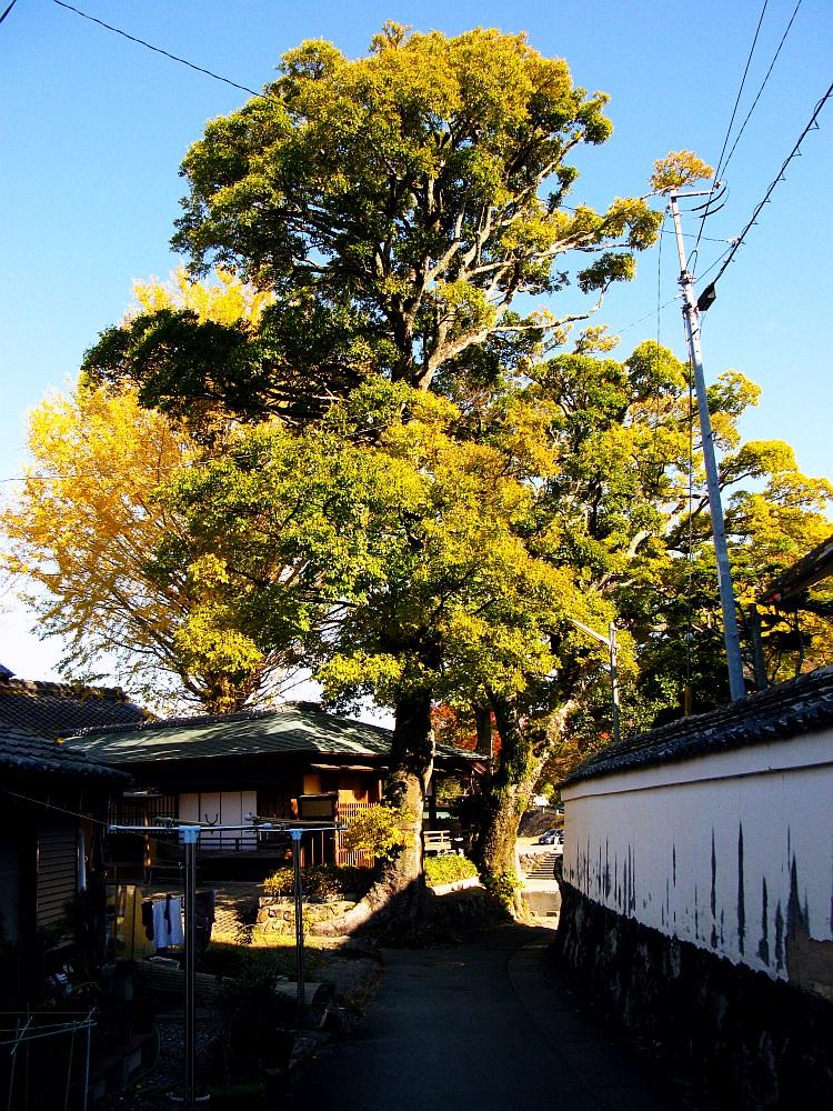 2013_11_29 伊勢神宮:おはらい町A38