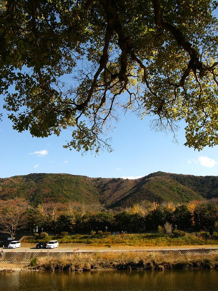 2013_11_29 伊勢神宮:おはらい町A43