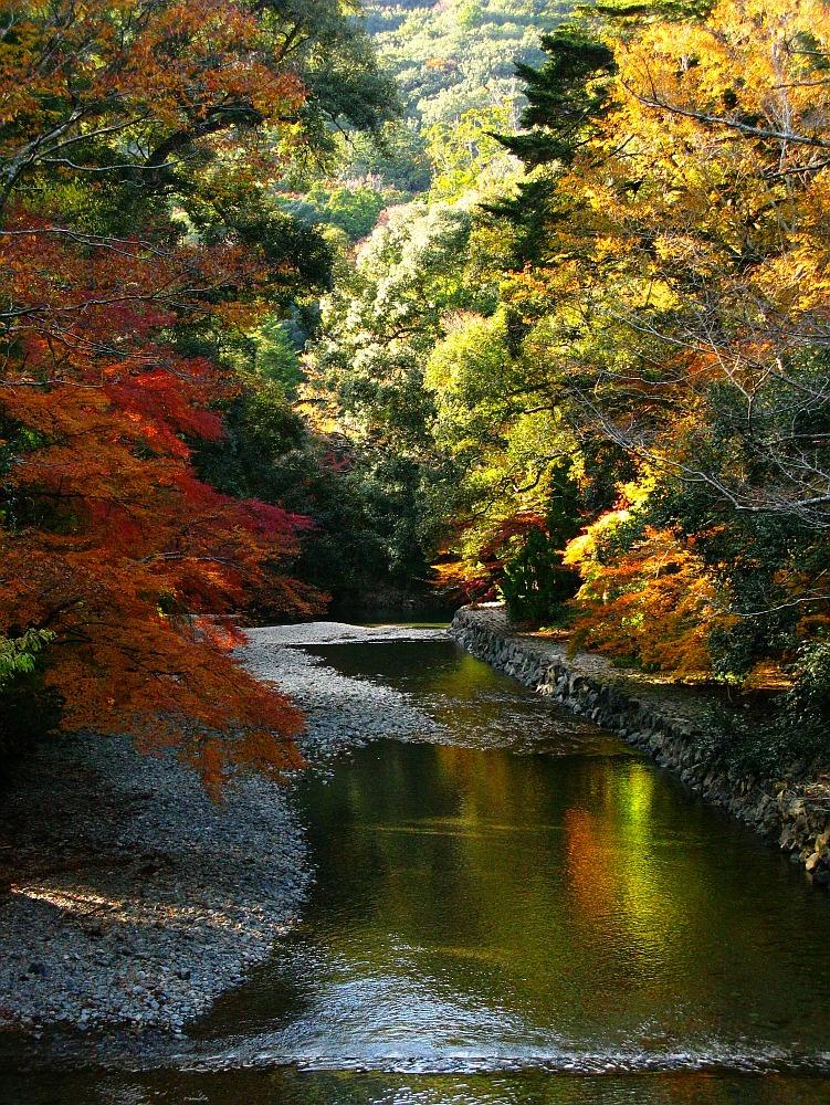 2013_11_29 伊勢神宮:内宮A15