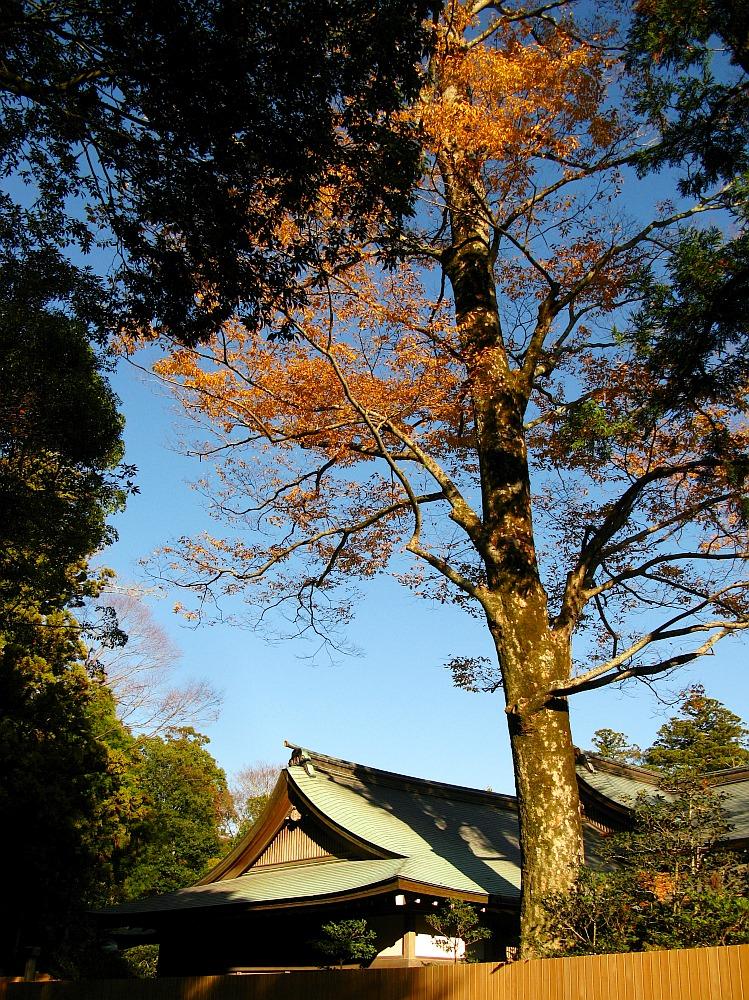 2013_11_29 伊勢神宮:内宮A29