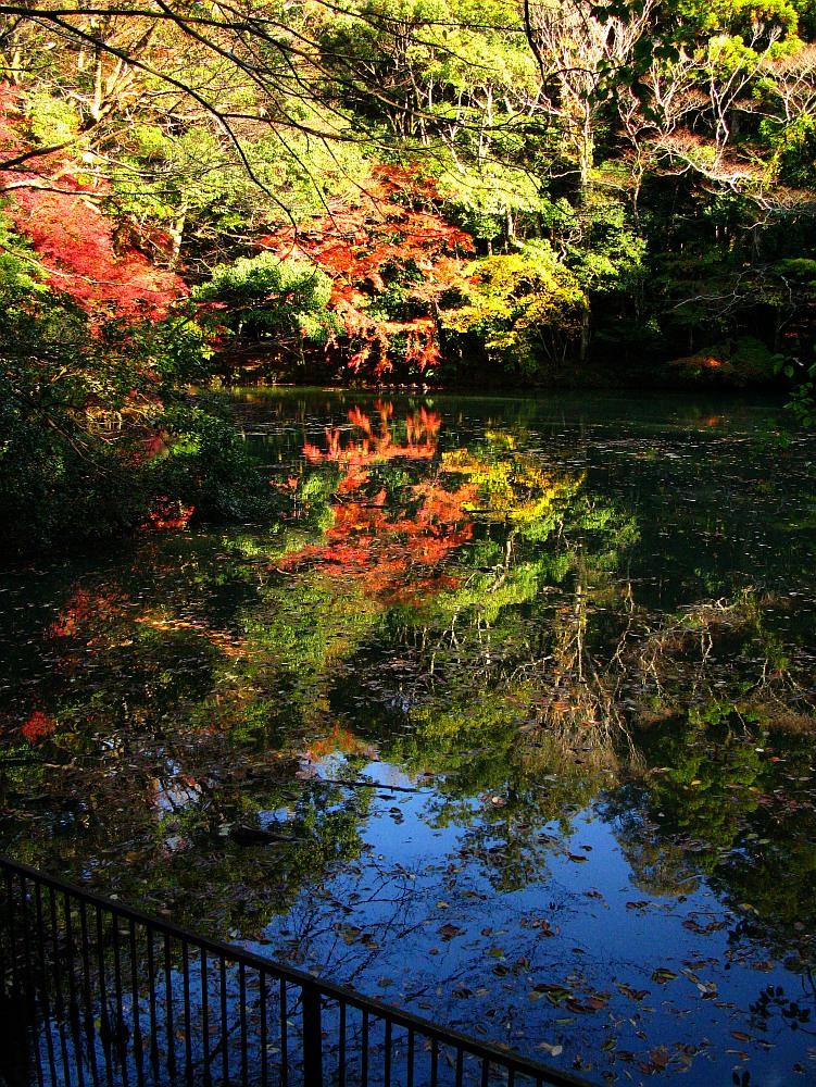 2013_11_29 伊勢神宮:内宮A31