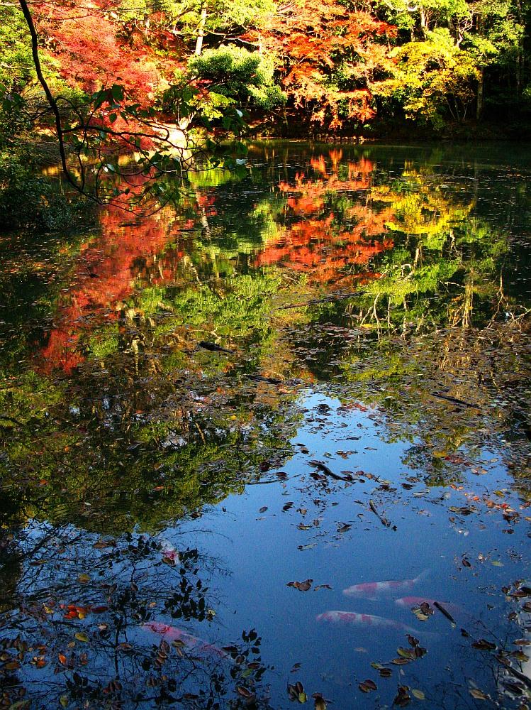 2013_11_29 伊勢神宮:内宮A35