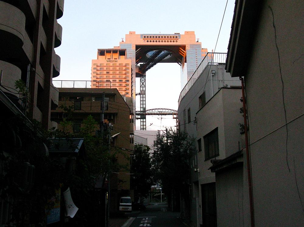 2013_11_20 梅田スカイビル 空中庭園展望台05
