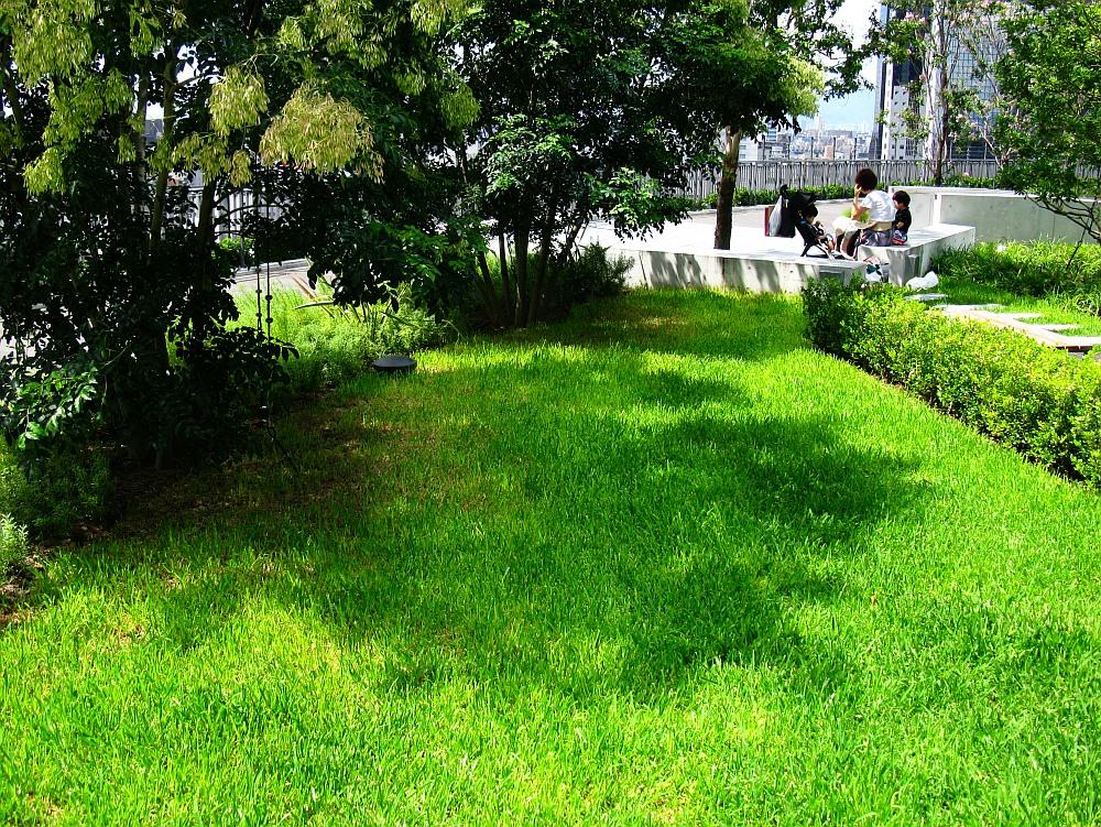 2013_09_05 GRAND FRONT OSAKA グランフロント大阪 屋上庭園14
