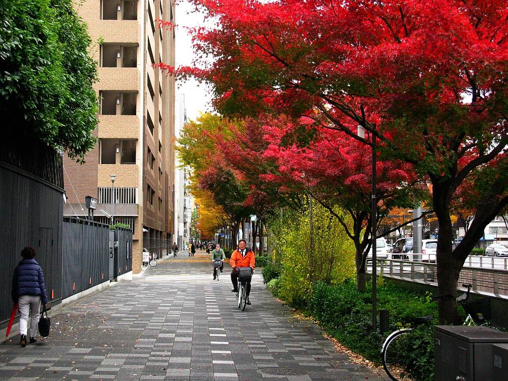 2013_11_25京都52