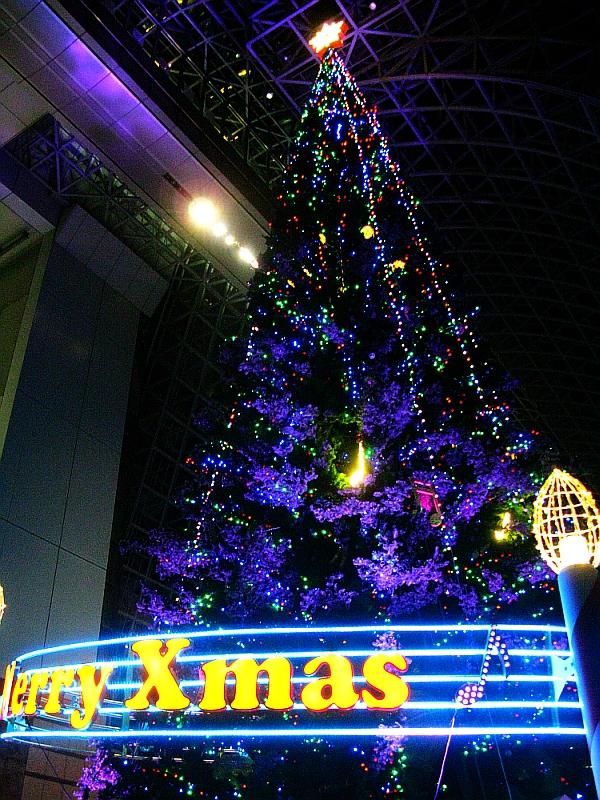 2013_11_25京都駅:クリスマス夜景34