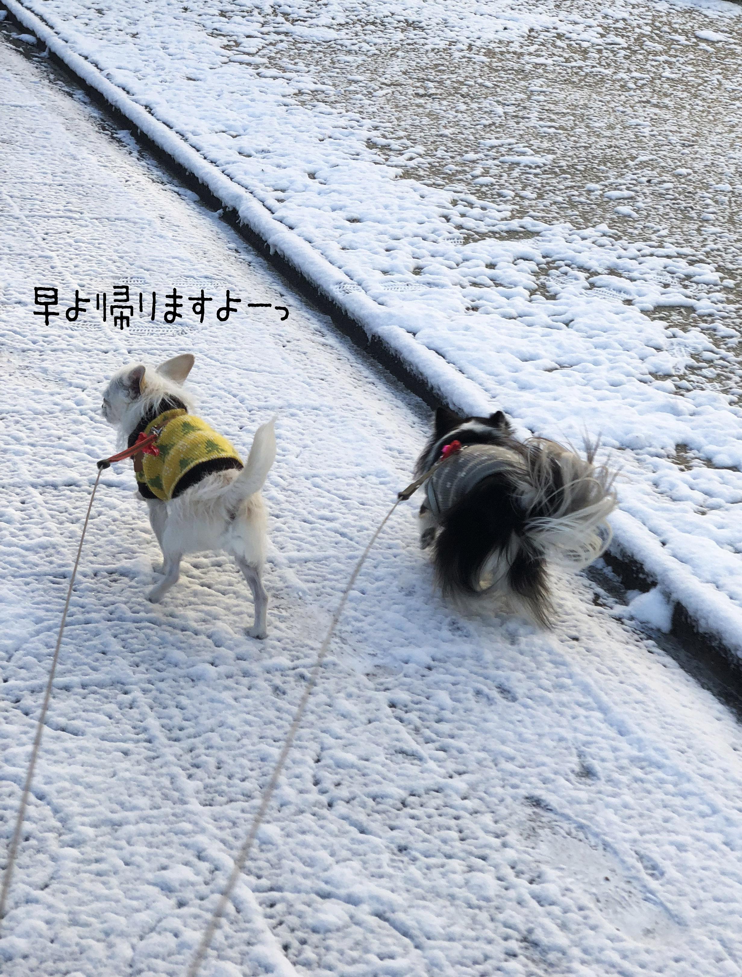 1801雪散歩02