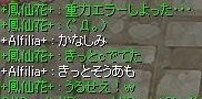 screenLif900.jpg