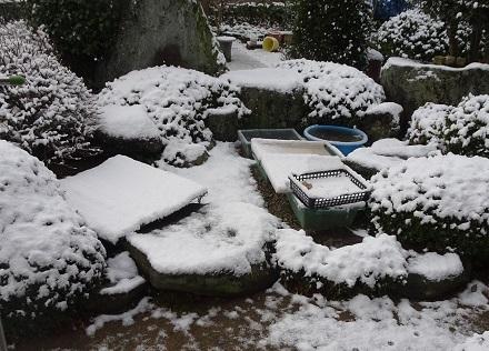 14雪の朝20180212