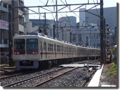 mini_6653_sinkeisei_P2185347.jpg
