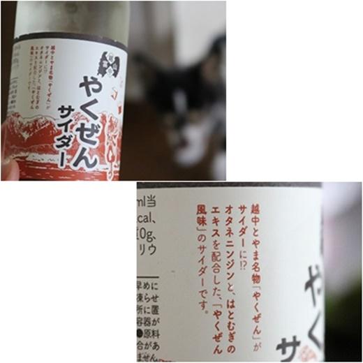 cats1_2017120621081957c.jpg