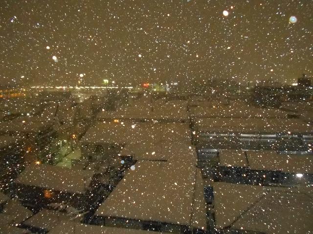 180122~23大雪②