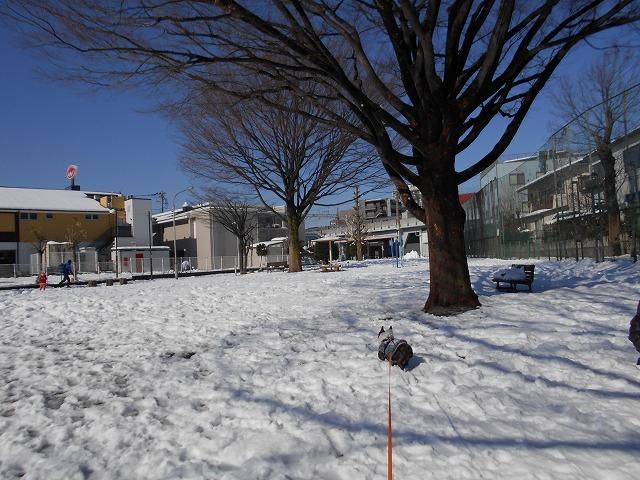 180122~23大雪⑩