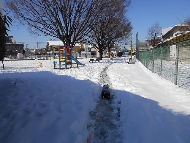 180122~23大雪⑨