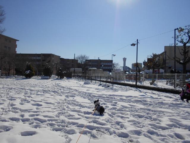 180122~23大雪⑮