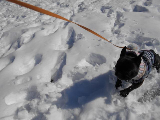 180122~23大雪⑬
