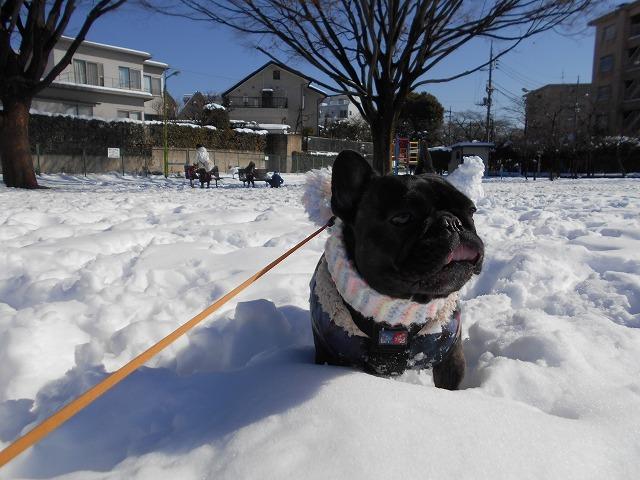 180122~23大雪⑰