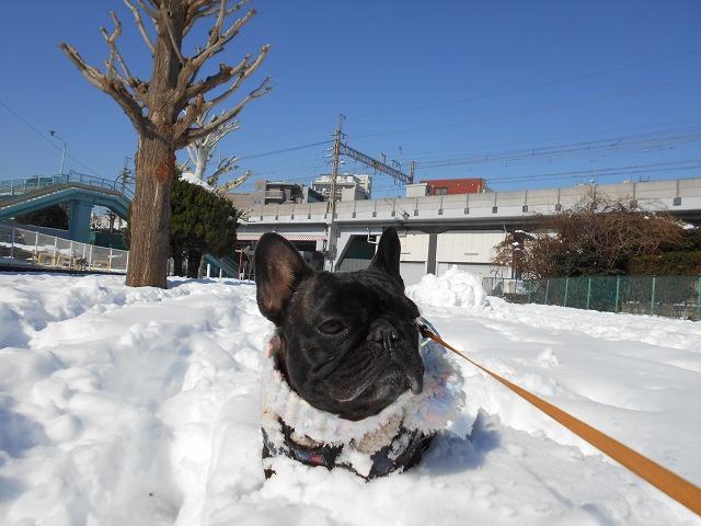 180122~23大雪⑳2